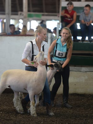 4-H members who showed in the top of their class show again in the round robin competition July 21, 2016, at the Union County Fair in Liberty.