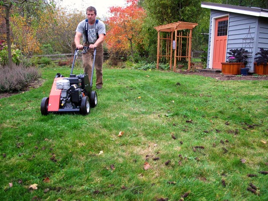 Lawn care basics