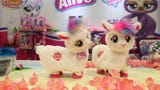 The 116th annual North American International Toy Fair is focusing on the realities of limited shelf space now that one of the biggest retailer, Toys R Us has vanished from the landscape. (Feb 18)