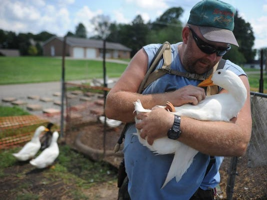 zan 07xx therapy ducks 001.JPG