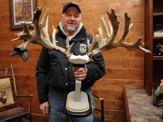 Ivan Hochstetler, owner of Double H Whitetails in Wayne County near the Holmes County line, holds an antler rack from Sudden Factor, son of X-Factor, both deer known for their nontraditional antlers with strong bloodlines.