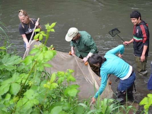 -Mill Creek netting.jpg_20120522.jpg