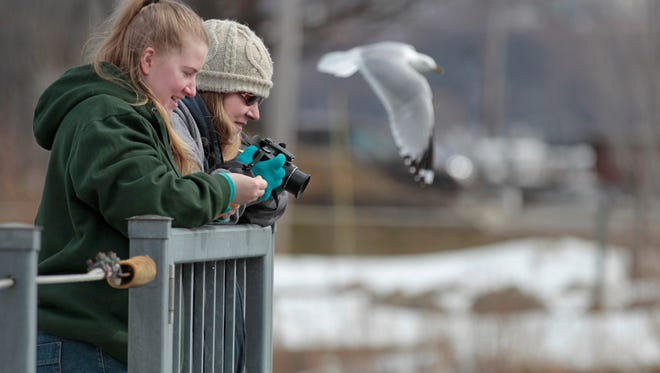 """As a seagull flies past, Jodi Roeding, Henrietta, with camera at the ready, does a little bird watching with daughter Alyssa Roeding at the Irondequoit Bay outlet Monday, March 16, 2015.  The pair were tracking and photographing colorful redheaded ducks.  """"I just love to watch them dive,"""" said Jodi Roeding.  The pair said they come out to the outlet, or the Charlotte pier several times a week in the spring to look for migrating birds.  One of Jodi's favorite photo to date is of a blue heron eating a very large bass."""