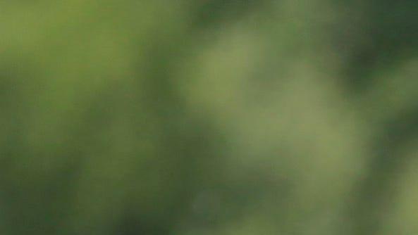 Jets offseason report: Last chance for Rex Ryan, Mark Sanchez?