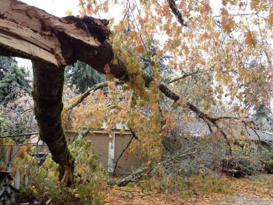 Storm-related damage in South Salem.