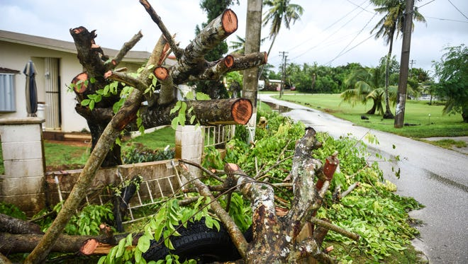 Cut limbs and branches are pile near the trunk of a toppled tree is seen near a residential home in Yigo on Saturday, July 7, 2018. The tree was on of several brought down in the area by strong winds during the passage of Tropical Storm Maria on Thursday morning.