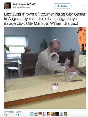 @teddyhomernews tweeted this photo of a man tossing bed bugs on an Augusta, Maine, city counter.