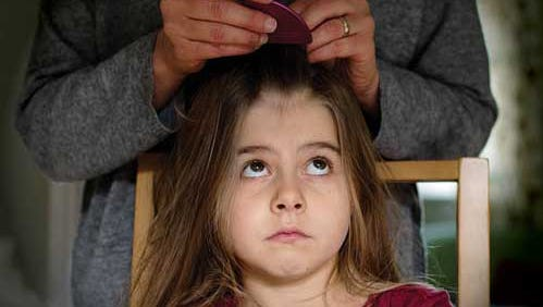 Despite concerns that head lice are becoming resistant to current treatments, over-the-counter medications can still be a parent's first line of defense.