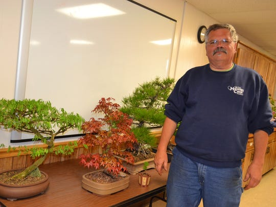 Steve Tusen, the bonsai expert at Mulberry Creek Herb Farm, displays several bonsai trees at the May meeting of the Sandusky Bonsai Club.