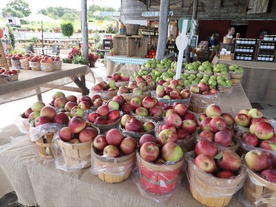 The farm stand at Outhouse Orchards on Hardscrabble