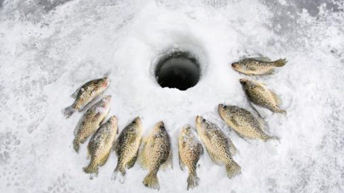 Mobridge ice fishing tourney draws 500 teams for Ice fishing south dakota