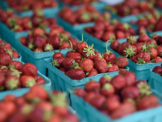 20150620_Strawberry_Fest