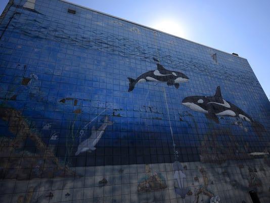 GPG ES Whale mural 091415