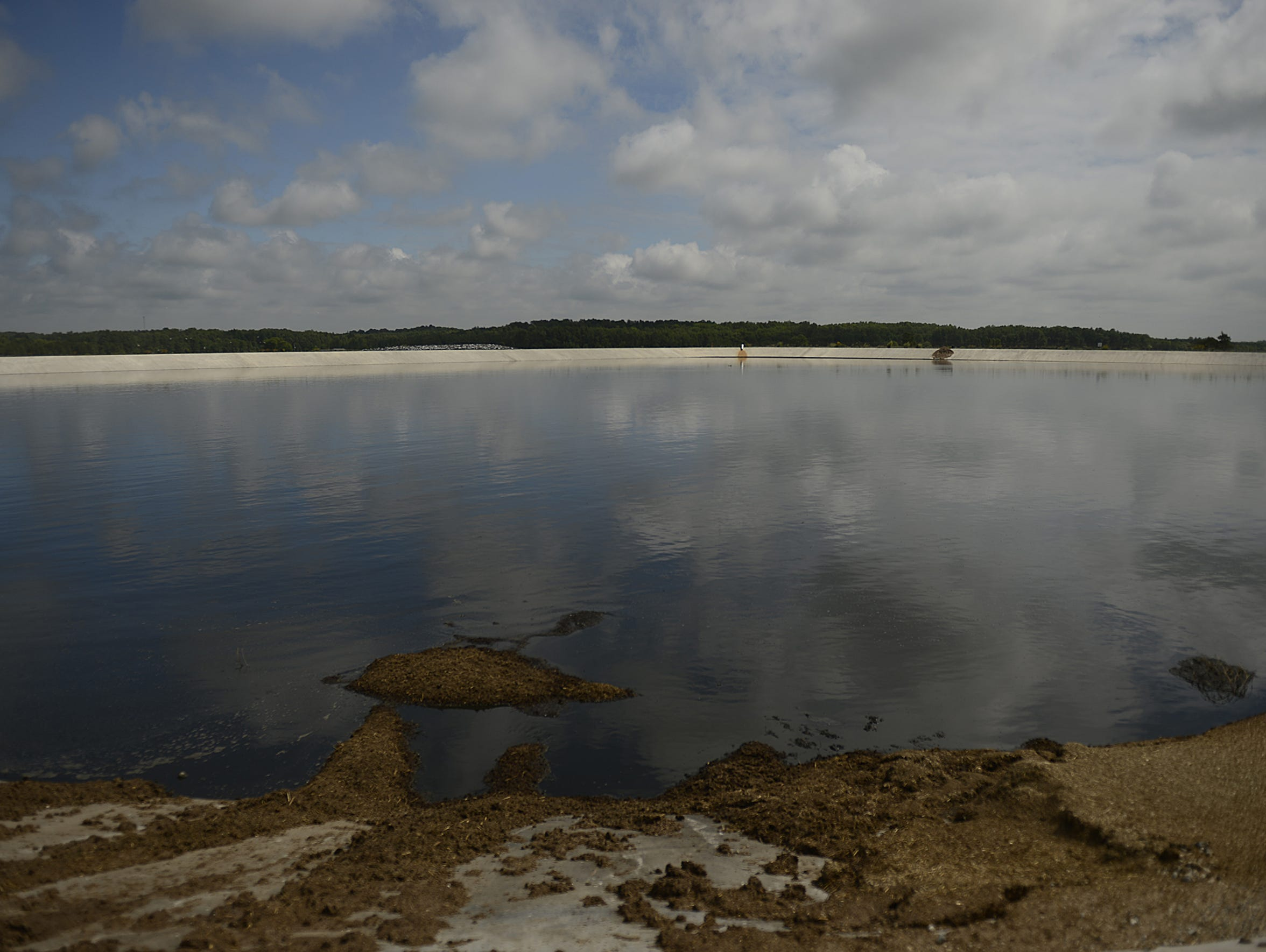 A large lagoon holds manure on the Kinnard Farms in