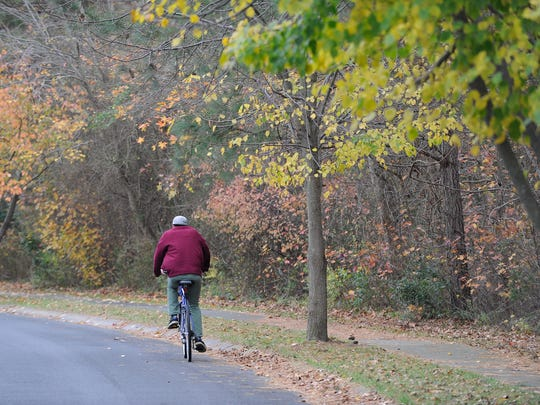 A bicyclist rides along West Fourth Street in Lewes on Nov. 19. A group wants to preserve the area as an urban forest.
