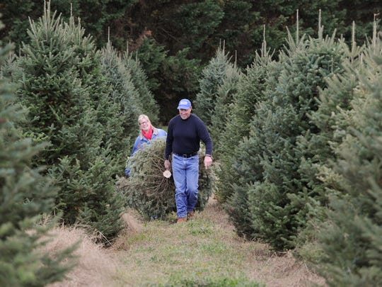 Lisa and Craig DeVries, of Middletown, with the Christmas tree they cut at Coleman Christmas Tree Farm in Odessa.