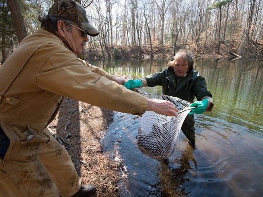 Michael Todd of Wyoming, left, a retired employee with Delaware Division of Fish and Wildlife hands a net of rainbow trout to Mark Zimmerman a fisheries biologist with the Delaware Division of Fish and Wildlife for release into Tidbury Pond in Dover.