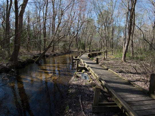 Free, self-guided walking trails extend throughout the Abbott's Mill property.
