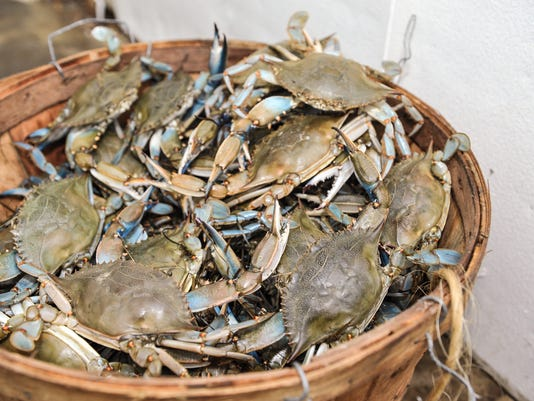 how to find out if you have crabs