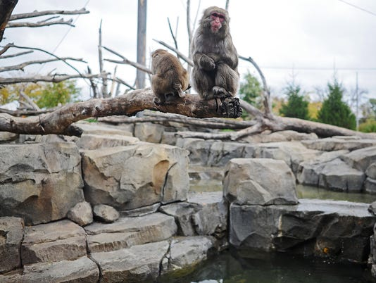 Great Plains Zoo Conservation