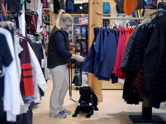 Guide Dog Mobility Instructor Ashley Ayers, of Leader Dogs For the Blind browses in the Moosejaw store to train a guide dog, Memphis, a Labrador Retriever in November 2016 at The Village of Rochester Hills in Rochester Hills.