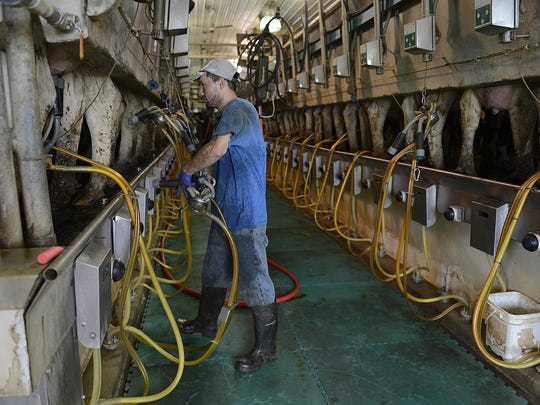 Keys to working without rbST include allowing cows