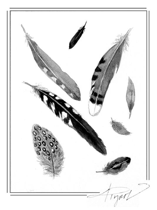 635968524988019087-TOS-Feathers-Molting.jpg