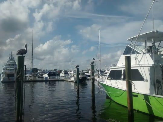 Port, Fort Lauderdale