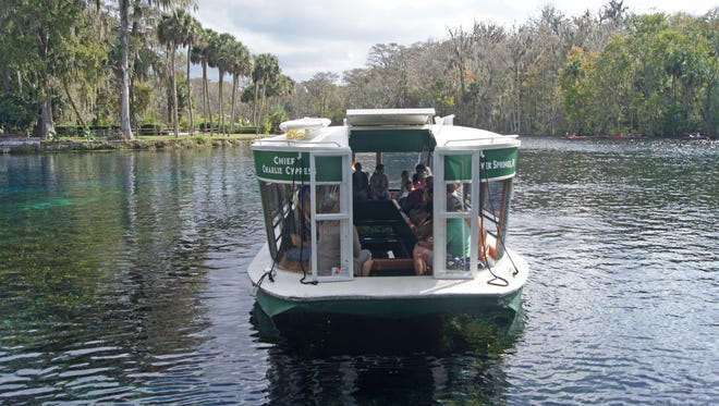 "Take a nostalgic tour of ""old Florida"" by cruising in a vintage glass bottom boat at the Silver Springs State Park while peering down at the bubbly springs and wonders below. Fish and turtles glide through the sea grass while an occasional alligator or manatee swims below."