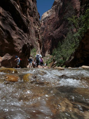 Hikers make their way through the waters of the Virgin River as they explore the Narrows in Zion National Park Tuesday, June 11, 2013.