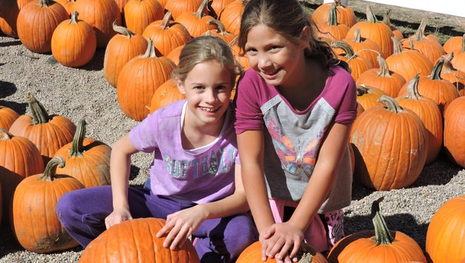 Katie Buchel (left) and Katie Shulick check out the pumpkins at Plymouth Orchards & Cider Mill. The two friends are from Livonia.