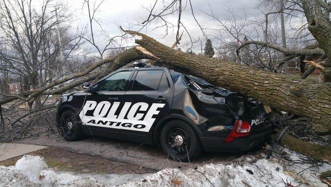 Antigo squad car is damaged from a fallen tree on March 7, 2017.