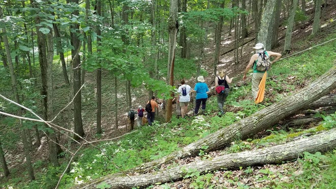 "Pipeline activists hike along the proposed Atlantic Coast Pipeline route as part of the ""Walking the Line"" event on Monday, June, 19, 2017."