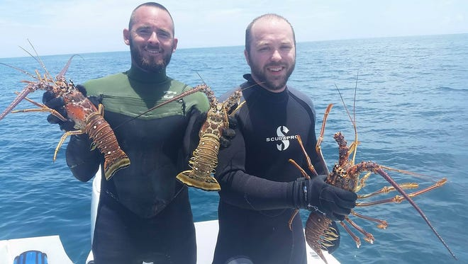Josh Huff and Danny McGinnis of Melbourne were part of a crew of lobster divers who scored 20 bugs on Wednesday's day one of 2017 Lobster Mini-season while diving in 40 feet of water off Sebastian Inlet.