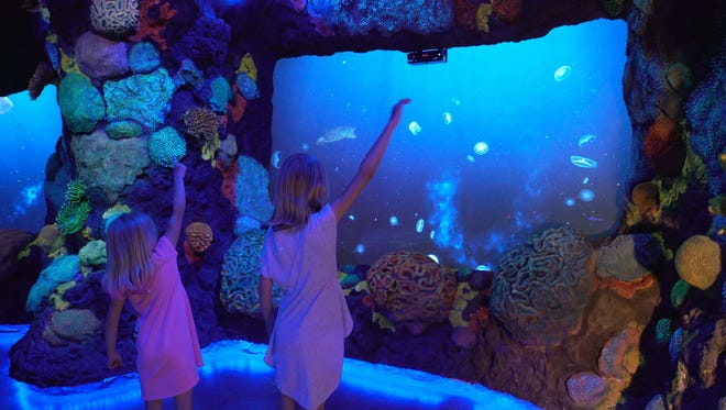 More complex effects are featured in the series of ten scenes that visitors navigate in the attraction.
