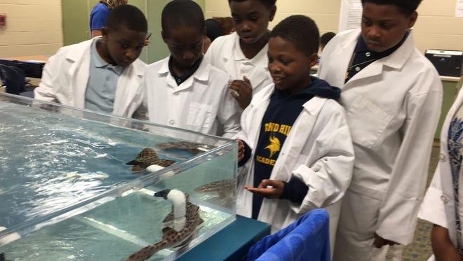 Cincinnati Public Schools students gather around the Newport Aquarium shark. Students have participated in The WAVE Foundation's Living Curriculum Initiative this year.