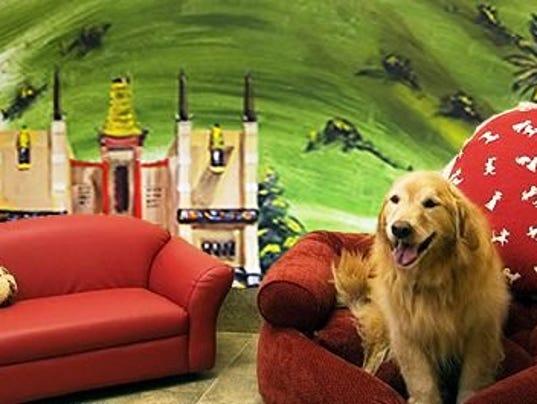 Red Dog Resort And Spa Cincinnati
