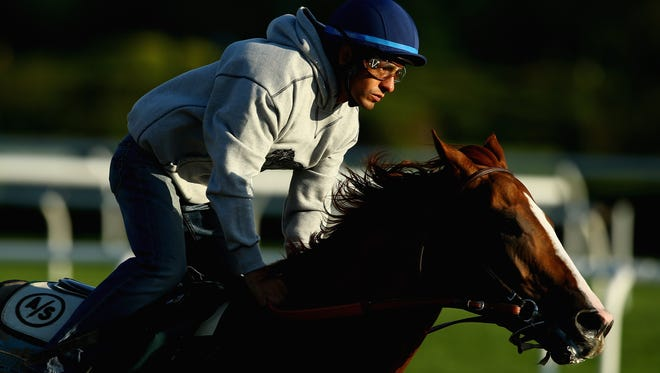 Kentucky Derby and Preakness winner California Chrome with jockey Victor Espinoza up, trains at Belmont Park on Saturday in preparation for the Belmont Stakes next Saturday.