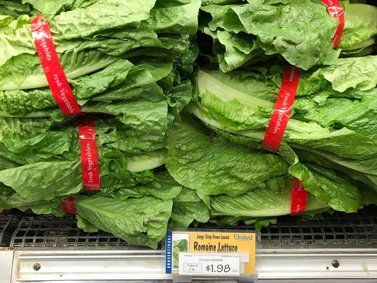 Romaine lettuce is displayed on a shelf at a supermarket