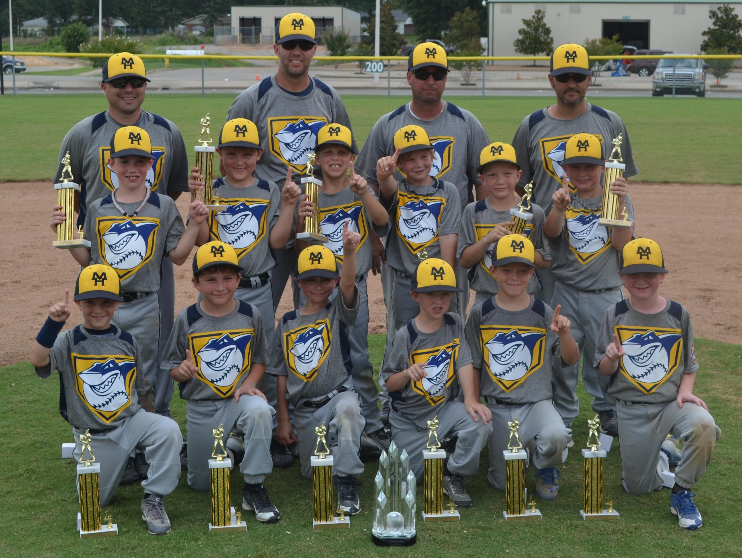 The Mountain Home Sharks recently won the 7-year-old Cal Ripken North Arkansas state championship. The Sharks defeated Paragould and Siloam Springs in pool play, then defeated Rogers 9-4, Batesville 11-1 and Blytheville 11-4 in the championship game. Team members are: first row, from left, Tate Cudworth, Cobey McGowan, Bryce Kincade, Jake Brewer, Carter Adkins, Rhett Gilbert; second row, Jackson Corp, Eston Ford, Jake Brashears, Colt Crownover, Hunter Roberts, Jax Wescoat; third row, coaches Chris Cudworth, Kyle Brashears, Andy Wescoat and Jason Kincade.