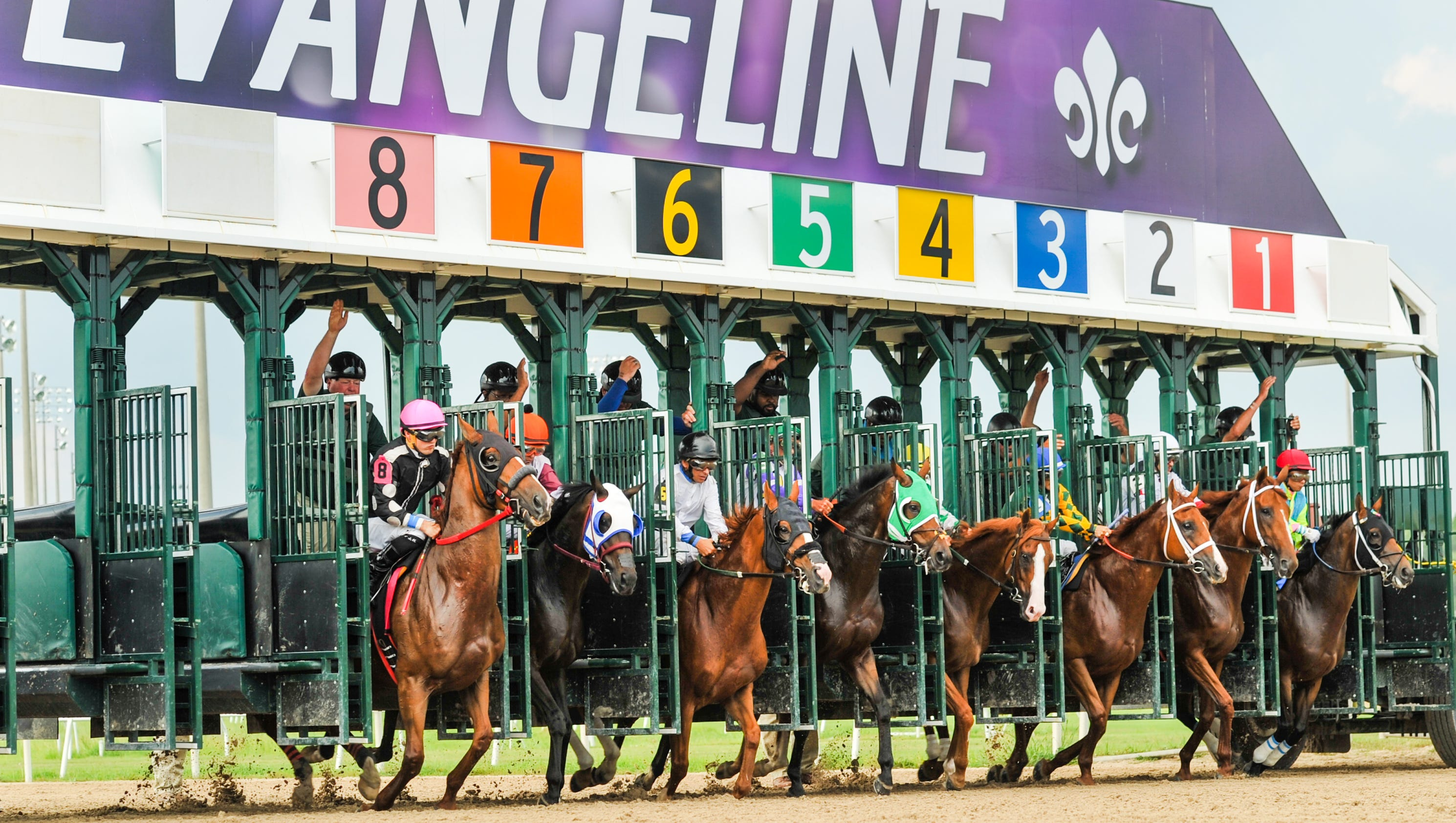 Evangeline Downs Racing Results