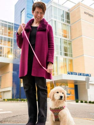Farley, a golden retriever puppy, has been hired full time at East Tennessee Children's Hospital in Knoxville. With her is Sue Wilburn, the hospital's vice president of human resources and Farley's caretaker.