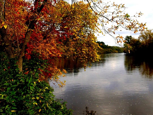 Fall color along the Red Cedar River trail south of Menominee on Sept. 20, 2014.