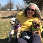 Where are the best suburban Milwaukee dog parks? Here are some ideas for dog socializing and exercise