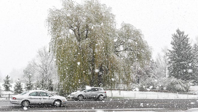 Cars travel through Fort Collins on Prospect Road as snow falls on a spring day in April.