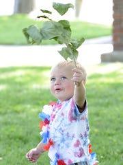 Alex Denter, 1, waves a leaf as he runs through the park.