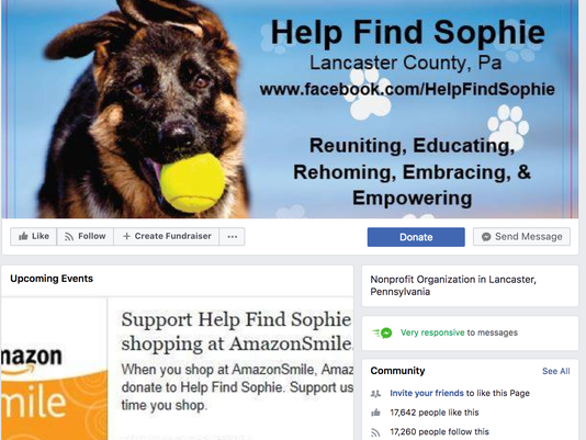 Help Find Sophie in Lancaster PA demanded donation to