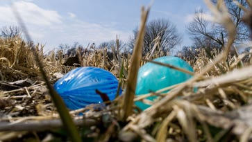 Water Works officials want families to explore park to find 'extraordinary eggs'