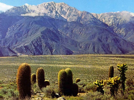 The Devil's Garden with view of Mt. San Jacinto.