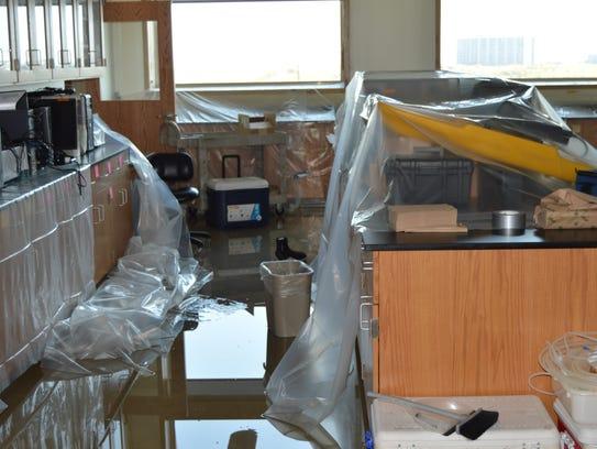 The value of scientific equipment at the UT Marine
